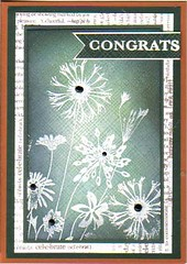 Congrats (Bea's cardcreations) Tags: cg170 cl488 cl479 s5507