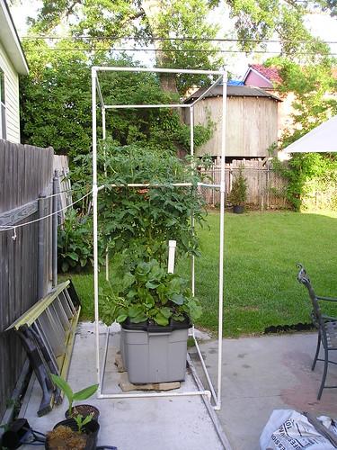 ET Cage Structure