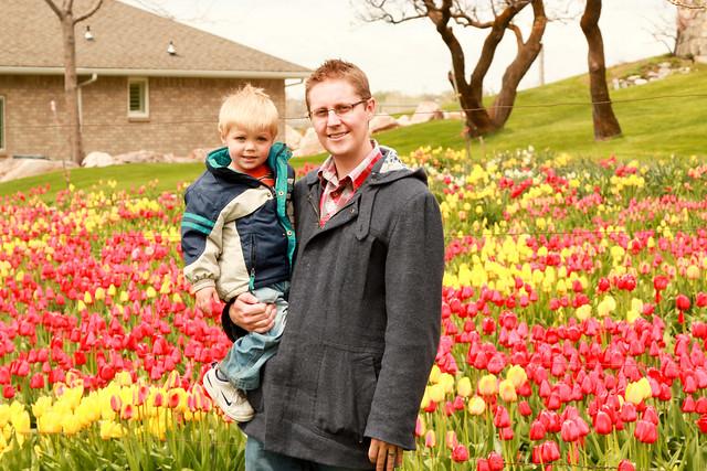 gpa's tulips