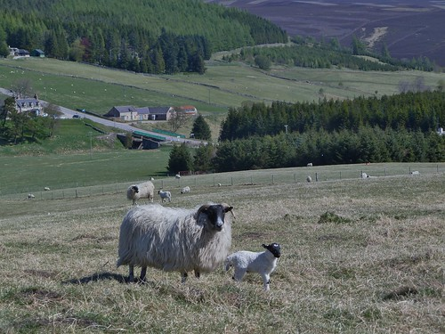 Highland Scenery at Corgarff Castle