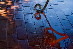 124/365 (Tom Wachtel) Tags: red reflection water metal tile iron terrace pavement terracotta swirl curl 365 terra cotta molten wrought