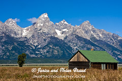 Abandoned Farm Building in Grand Tetons NP JN036021 (JaniceNolan_braud) Tags: park mountain building history abandoned nationalpark historic wyoming grandtetons mountainrange grandtetonsnationalpark mormonrow farmbuidling