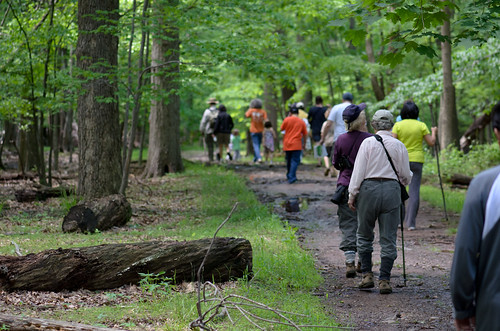 Hemlock Hikers [Mayapple Festival]