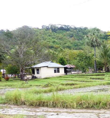 Timor Ouest-Kupang-Kefa (38)