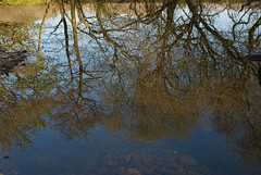 On Reflection (Chris Noble Photography) Tags: water reflections river landscape other misc places naturalhistory northwales capelcurig riverscene photogenre