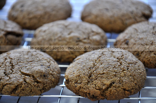Biscoitos de gengibre recém-saídos do forno