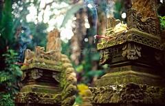 Temple Shrines (@Mark_Eveleigh) Tags: travel bali mountain indonesia temple shrine culture hindu offerings batukaru batukarumountain