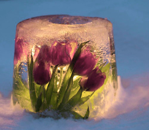 ice flower bouquet candles