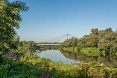 double-cross (stevefge) Tags: krakow poland rivers vistula landscape reflections summer zomer reflectyourworld bridges
