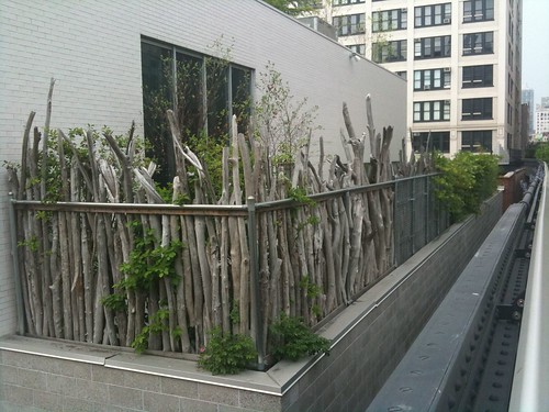 Fascinating fence