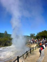 Downwind (Matt Morelli) Tags: newzealand rotorua geyser ladyknox