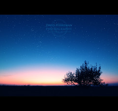 Sunset (DavidHR) Tags: blue sunset sky david tree canon stars mine angle belgium belgique altitude wide coucher deep belgi sigma mining tip waste mons 1020 solei toiles wallonie spoil charbon hainaut terril borinage herreman 400d davidherreman