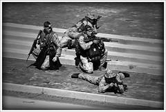 Marine Week 16