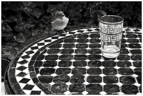 Am Runden Tisch