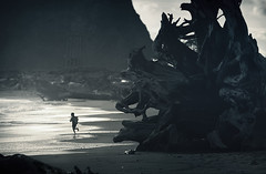 Rise of the six headed dragon (sparth) Tags: blue beach silhouette june giant evening la juin child running 300mm telephoto push desaturated root enfant arbre lapush racine gianttree courir 2011 gigantesque 5dmkii