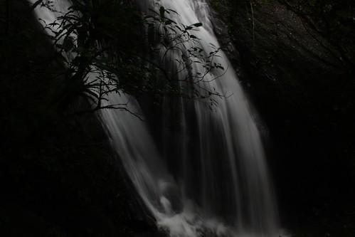 新北市三峽雲森瀑布_37_2011.06.28