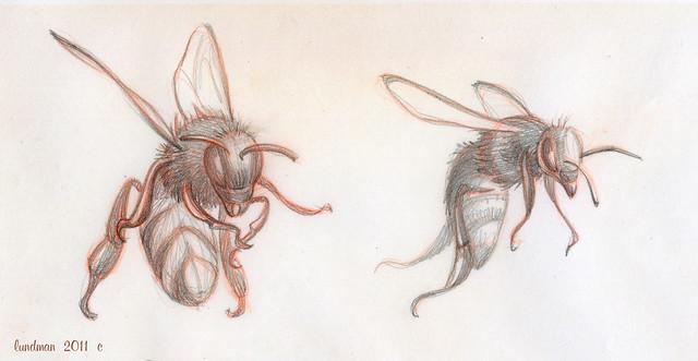 Lundman-Bees001
