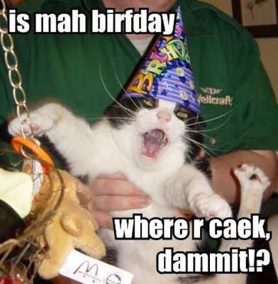 cat_birthday_parties_07