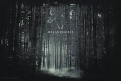 Melancholia (Subversive Photography) Tags: woman mist art girl strange loss fog mystery forest photoshop woods sad mourning atmosphere eerie sorrow danielbarter