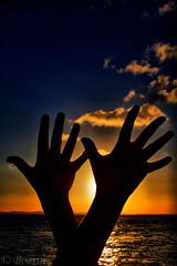 Saudando o por-do-sol (Boarin) Tags: luz sol natureza mãos