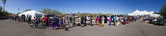 140521 PACC Vaccine Clinic-p11 (PimaCounty) Tags: panorama dog dogs animal animals shots pano crowd group event needle vaccine pacc