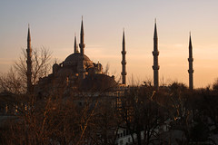 Setting Sun In Istanbul (Miguel Virkkunen Carvalho) Tags: city trees sunset sky urban sunlight composition digital canon turkey photography eos evening march warm europe day outdoor branches middleeast istanbul mosque clear bluemosque turkish oldcity minarets arquitecture sultanahmet lateafternoon settingsun photooftheday picoftheday 2014 bestoftheday 1000d canoneos1000d