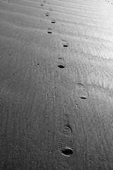 My Tracks (Nolte Photo) Tags: usa art feet beach oregon canon print foot shoe coast seaside sand boots footprints dirt step oregoncoast footprint seasidebeach 60d canoneos60d efs18200 efs18200mmf3556is efs18200mm eos60d