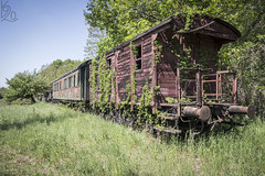 The Last Stop / Konen zastvka (katka.havlikova) Tags: abandoned train vagon oputn vlak steam transport vehicle transportation urbex urban exploration explore canon germany nmecko dobytk decay beauty wood metal