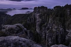 Mystic Landscape (Explore) (Rico Richter) Tags: rathen schsische schweiz blue hour mystic morning morgen sandstein elbsandsteingebirge nebel saxony switzerland