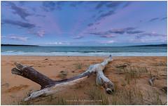 Australian Blue Hour, Eden Australia (CvK Photography) Tags: australia autumn canon coast color cvk fall holiday newsouthwales seascape eden australi au bluehour sunset pastel beach ocean oceaan