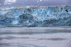 IMG_0509 (EliaZane) Tags: alaska glacier mendenhall sea ocean ice blue cruise