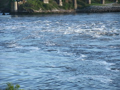 Saint John Reversing Falls