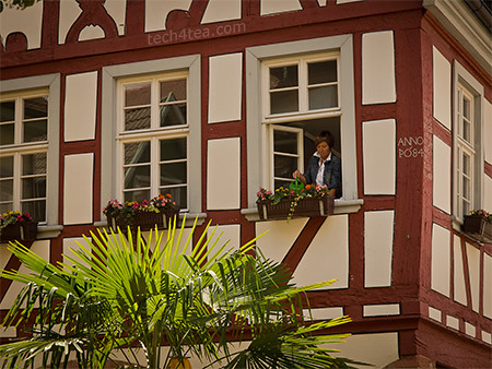 The Germans really love to garden, even on a window sill. There were roses and flowers all along the roadsides and houses along the roads.