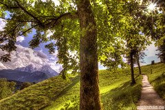 Aufstieg zum Lockstein, links der Watzmann (alpenbild.de) Tags: mountain mountains tree berg clouds way bayern bavaria berchtesgaden path wolken berge mount baum hdr weg wanderweg bgl  watzmann alpenbildde