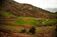 Somwhere in the Atlas (Grumbler %- ) Tags: bw morocco maroc atlas marrocos fujipro400h almaghrib المملكةالمغربية almamlakaalmaghrebiya almaġrib amerruk almamlakatulmaġribiyah ⴰⵎⵔⵔⵓⴽⵎⵓⵔⴰⴽⵓⵛ