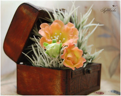 Gloxinia (RykhlinskaARTstudio) Tags: handmade decoration coldporcelain clayflowers lunaclay thaiclay