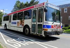5253 on the L (jayayess1190) Tags: city urban bus philadelphia publictransportation diesel pennsylvania neighborhood vehicle commuter passenger masstransit septa nabi highfloor detroitdieselseries50 allisonb400r