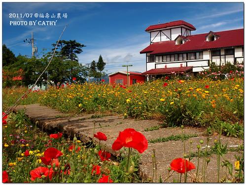 福壽山農場-17