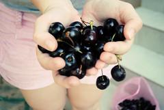 (Pantelina Vassilliou) Tags: red summer black girl hands cherries fingers summertime hold day35 100daysofsummer