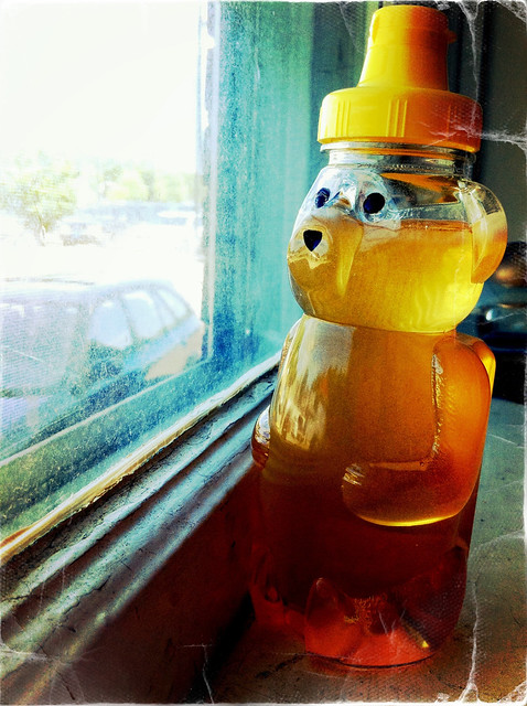 honey bear 2