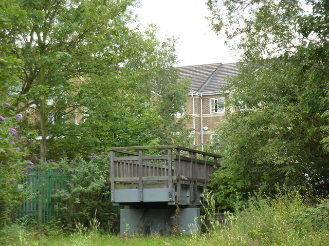 Wandle Park's Bridge To Nowhere