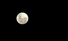 Blue Moon, (Vicenzzo Paiva) Tags: moon 30 canon 14 crop bluemoon sx130 336mm