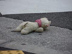 Person Dying - Namba, Osaka (Ogiyoshisan) Tags: stuffedtoy japan japanese   osaka namba    streetsnap