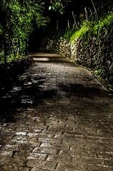 Uno de los senderos nocturnos de bizkaia (Beat Uribarren) Tags: bizkaia euskoflickr ispaster leaartibai