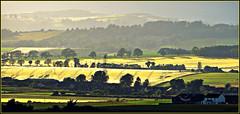Farming Country - Garth Farm, Strathmore Valley (ronramstew) Tags: summer landscape scotland angus farm farming valley fields forfar strathmore garth garthfarm