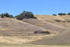 Summer Sunday in Franklin Canyon (lennycarl08) Tags: california railroad northerncalifornia train trains eastbay