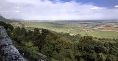 La plaine d'Alsace (mrieffly) Tags: plainedalsace vignoble village canoneos50d schauenberg pfaffenheim