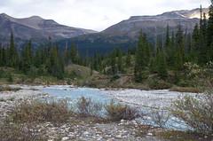 DSC_6235 (AmitShah) Tags: banff canada nationalpark