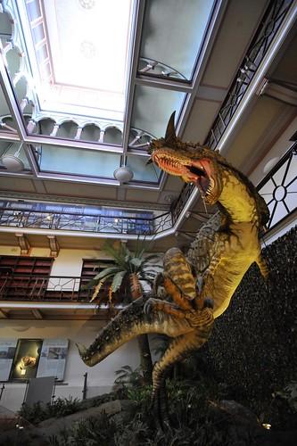 Perth 2011 - Western Australian Museum (10)
