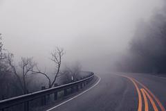 The Fog (Standard Deluxe) Tags: road mist tree rain fog haze winding wilderness railing bigcottonwoodcanyon 24105mm canonef24105mmf4lisusm
